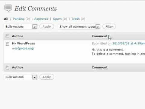 WordPress Tutorials - Comments