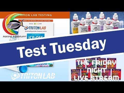 Test Tuesday Live Stream