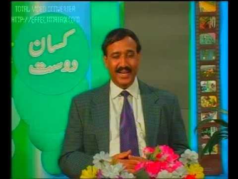 PARC KISSAN HELPLINE Pakistan Dr.Ashraf Sahibzada