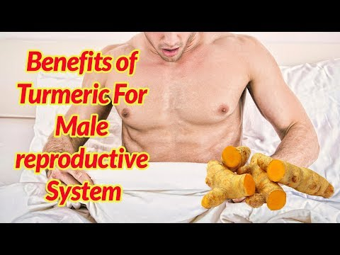 5 BENEFITS OF TURMERIC FOR MALE REPRODUCTIVE SYSTEM!! TURMERIC BENEFITS!!