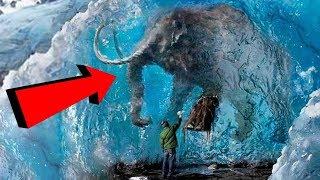 7 حيوانات من عصر ما قبل التاريخ عثر عليهم مدفونين في الجليد