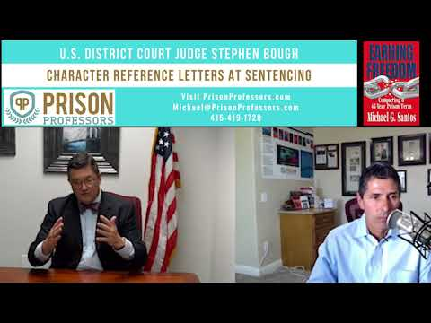 13. Character Reference Letters at Sentencing