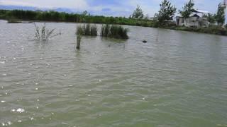 рыбалка в близи армавира