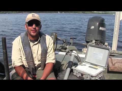Tracking Invasive Carp - Minnesota DNR