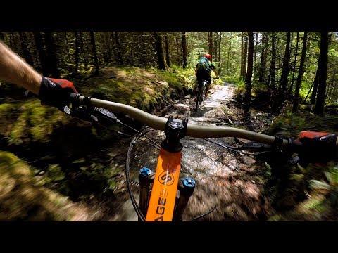 NOTHING BUT THE BEAST | Mountain Biking Coed y Brenin in Wales