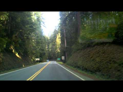 Drive through Redwood National Forest
