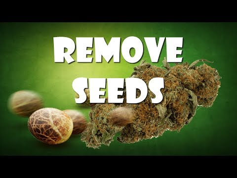How to Remove seeds from your Weed?