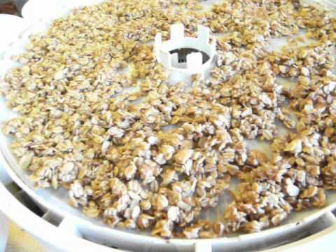 Dehydrated Bananas and Granola into One Snack Dehydrating Dehydrate