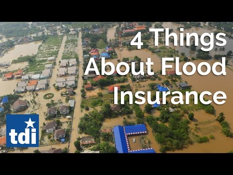 4 Things to Know About Flood Insurance   Texas Department of Insurance