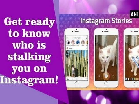 Get ready to know who is stalking you on Instagram! - ANI News