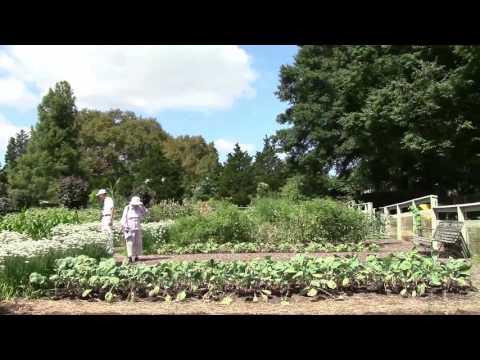 Longwood Gardens - Vegetable Garden