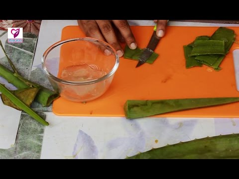 एलोवेरा के फायदे - Aloe Vera Health Benefits | Health Care Tip In Hindi