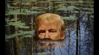 Trump: I Made Friends With The Swamp!