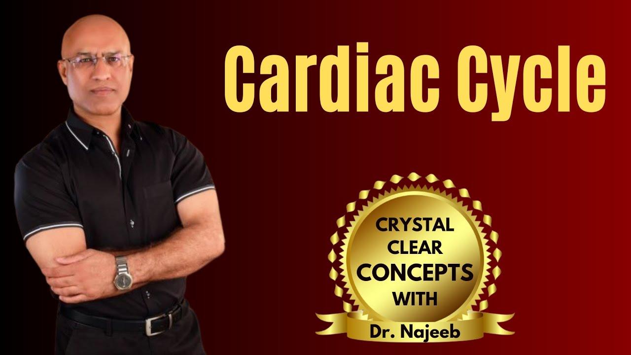 Cardiac Cycle - Systole - Diastole - Cardiovascular - Cardiology