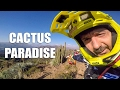 ANDES PACIFICO 2017 : First RIDE in PARADISE. Watch Out For Cactus ! - CG VLOG #67