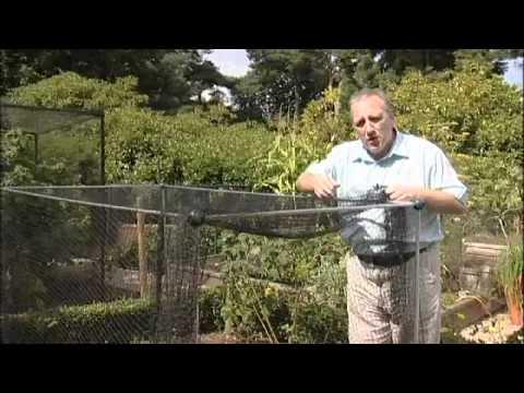 Build a ball with bird net