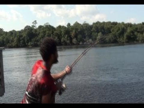 Ugly Stick VS Big Sting Ray Fight