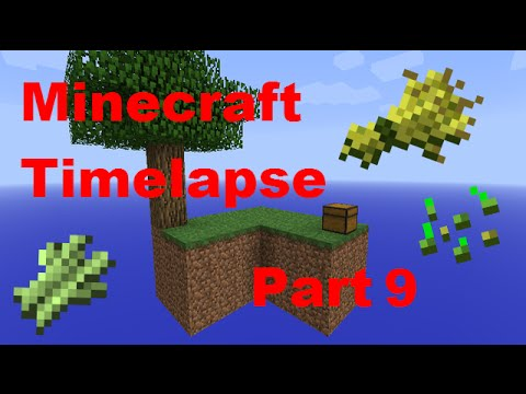 Sugar Cane And Wheat Farm!! - Minecraft - Timelapse - Skyblock - Part 9