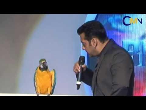 Salman Khan With Radhey The Talking Parrot
