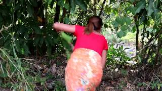 Survival Skills: Catch Red Ants On Tree Grilled On Clay For Food - Cooking Ants Eating Delicious #37