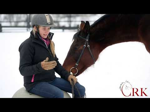 How to Ride the Sitting Trot without Bouncing