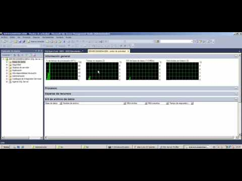 Monitor de Actividad SQLServer