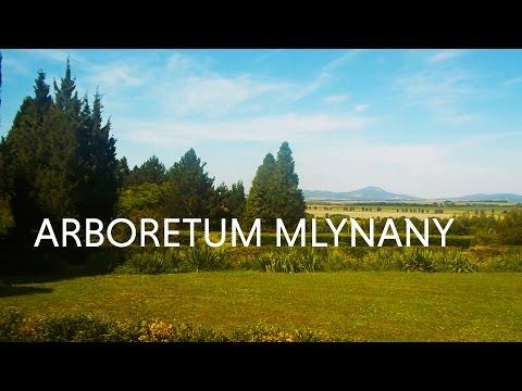 Arboretum Mlynany, Slovakia
