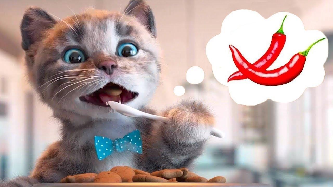 Little Kitten Preschool Adventure Educational Games -Play Fun Cute Kitten Pet Care Learning Gameplay