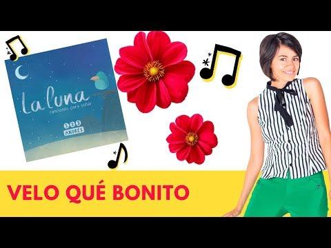 Xxx Mp4 Velo Qué Bonito 123 Andrés Ft Sophia Y Otras Canciones Del álbum La Luna 3gp Sex