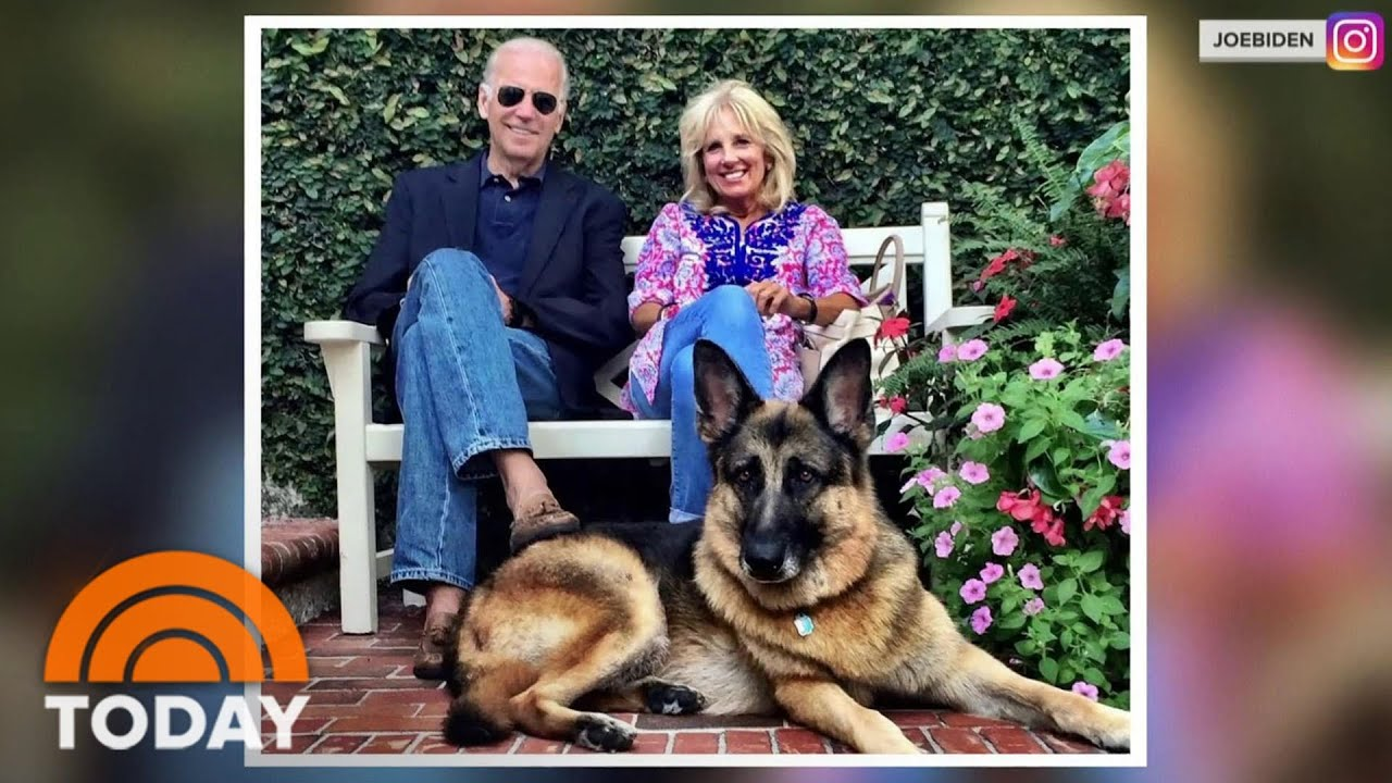 Presidential Pets Get A New Leash On Life From The Bidens | TODAY