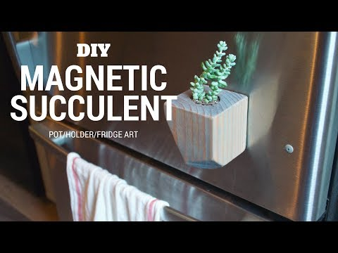 DIY Magnetic Succulent Pot