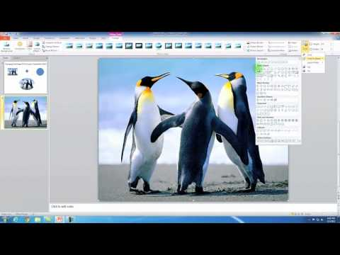 Changing The Shape Of A Picture In PowerPoint 2010