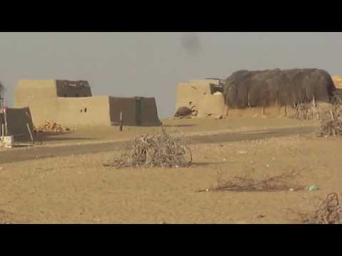 Indian Hut In Traditional Village ( Primitive Shelters) at Indo Pak Border, Jaisalmer India Tour