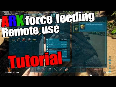 ARK Survival Evolved Force feeding Tutorial (Patch 1.19)