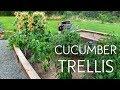 Super Cheap Cucumber Garden Trellis