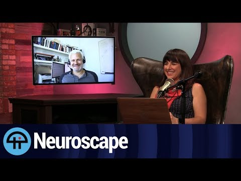 The Neuroscape Lab