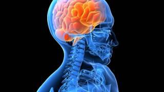 Sinthetix neurotoxin mp3