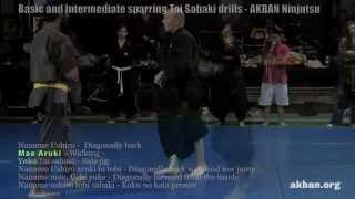 How to do the combat Ninjutsu Tai Sabaki drills for sparring - AKBAN Ninjutsu training
