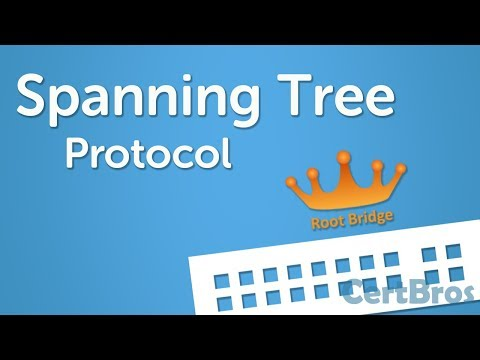 Spanning Tree Protocol Explained | Step by Step