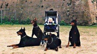 #x202b;10 أشخاص هم الأكثر حماية في العالم !!#x202c;lrm;