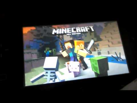 Minecraft split screen on the Wii u