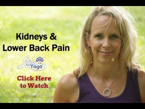Kidneys and Lower Back Pain Relief through Yoga