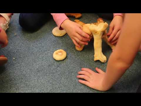Constructing Dinosaur Bones from Salt Dough