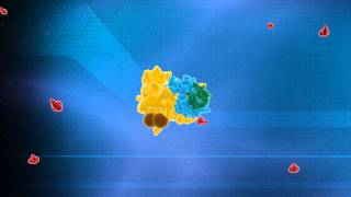 Ubiquitin System Animation - Nobel Prize in Chemistry 2004 Technion