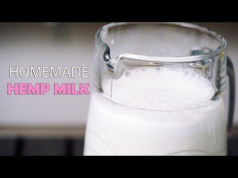 Homemade Hemp Milk Recipe - How To Make It & Benefits!