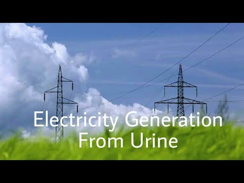 Electricity generation from urine