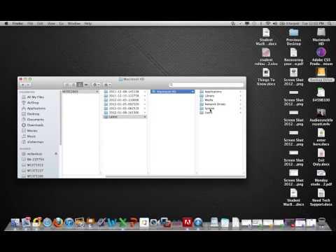Recover Safari Settings and Bookmarks