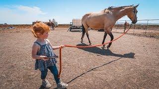 Adley RIDES SPIRIT the Horse!