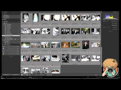 Lightroom Folders & Collections Explained