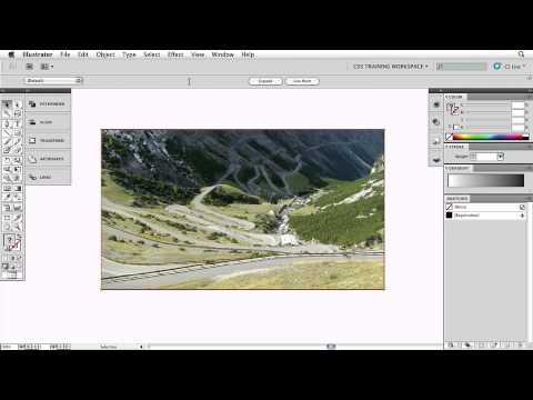 Adobe Illustrator CS5: Live Tracing An Image